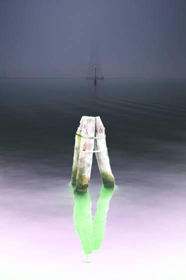 In the fog  4