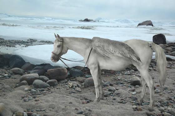 Ice horse