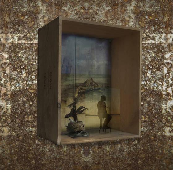 Box series 11