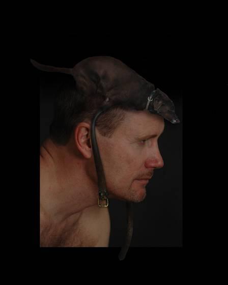 Dog chapeau