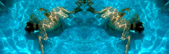 Frog morph 2