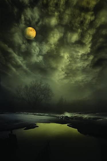 Midnight on the marsh