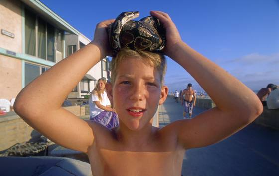 Joey with snake