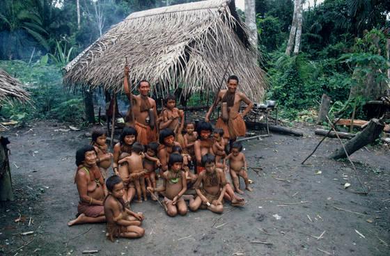 Extended yagua family