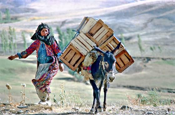 Kurdish woman 2