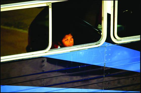 Blue striped bus