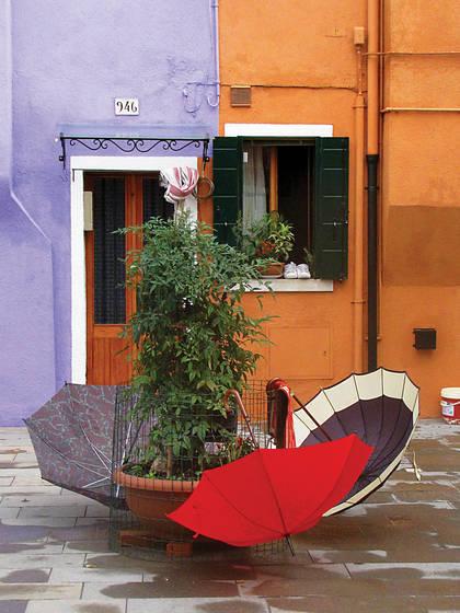 Umbrella 5