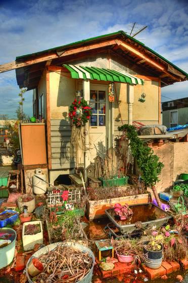 Dignity village home  41 winter garden