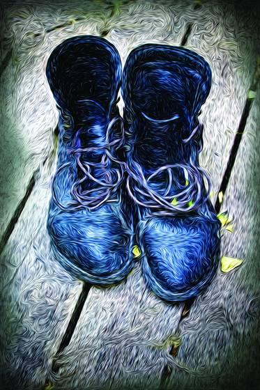 Teaser cat boots