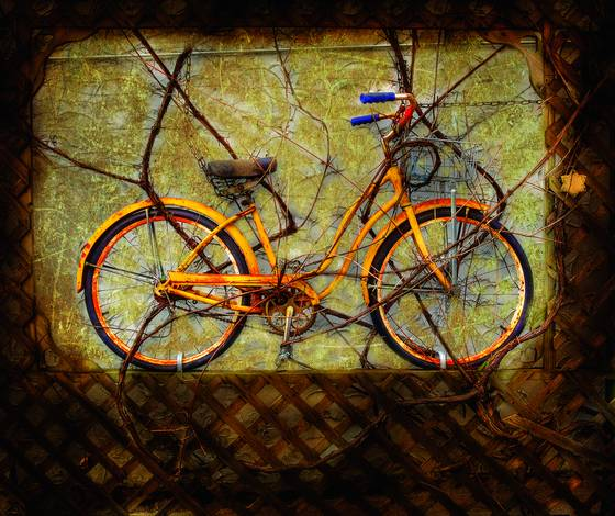 Yellow vine bike
