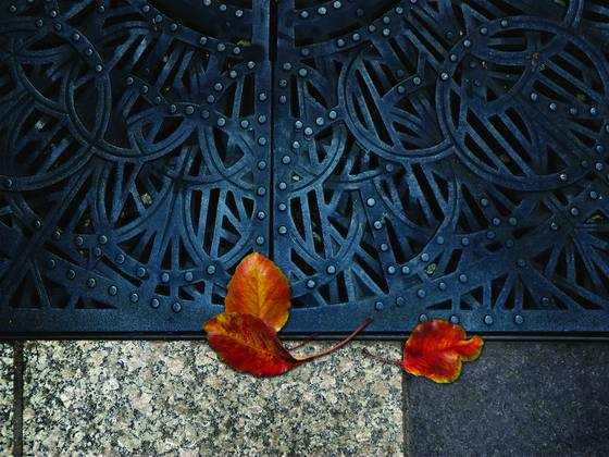 Grate with leaves