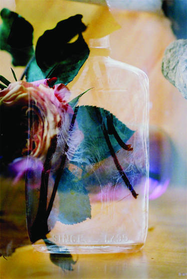 Still life with savannah glass