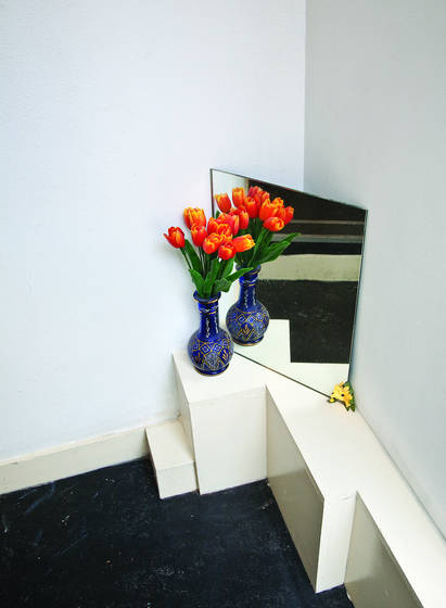 Tulips and mirror