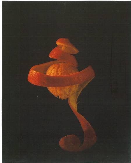 Orange venus 3