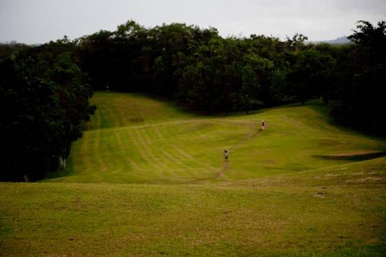 Rubber plant golf course