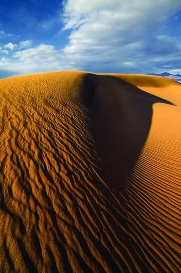 Raven dune