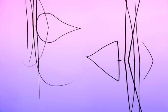 Reeds 01