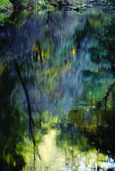 Reflections in lagunitas creek