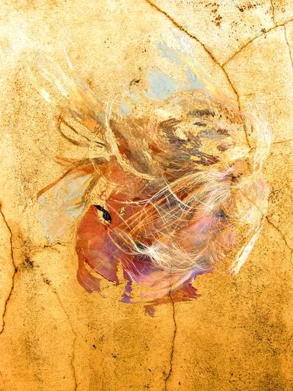 Fresco raven