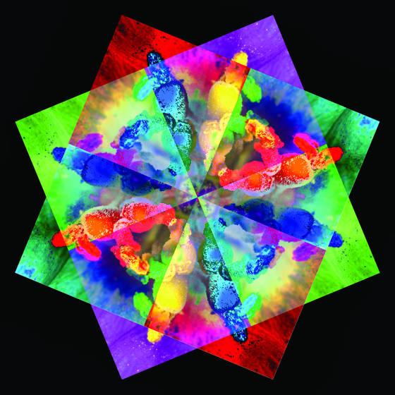 Lisanthus kaleidoscope