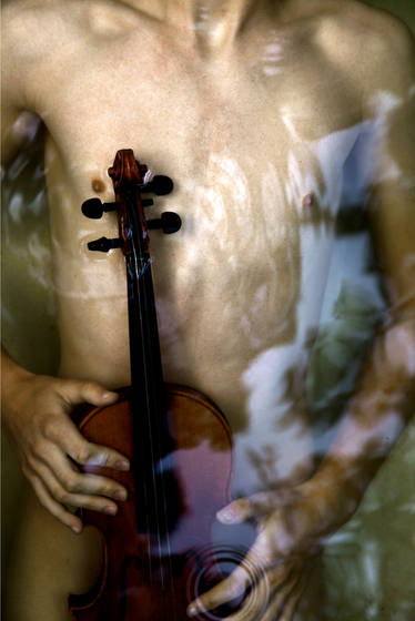 Chest and violin