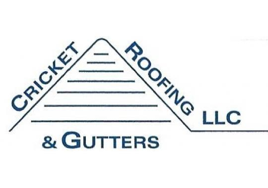 Website for Cricket Roofing & Gutters