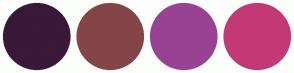 Color Scheme with #381937 #844549 #974293 #C33976