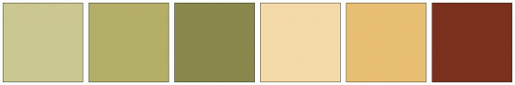 ColorCombo1002