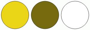 ColorCombo872