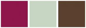 Color Scheme with #8E164B #C7D6C3 #5A402E