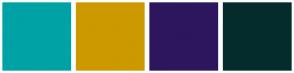Color Scheme with #00A2A5 #CC9900 #2D165E #052C2D