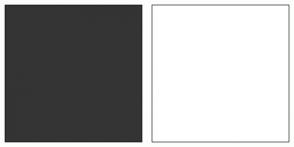 Color Scheme with #343434 #FFFFFF