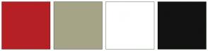 Color Scheme with #B52025 #A6A488 #FFFFFF #121212