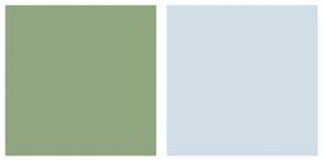 Color Scheme with #90A681 #D1DEE8