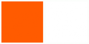 Color Scheme with #FF5B00 #FFFFFF