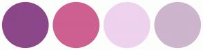 Color Scheme with #8B4789 #CD6090 #EED2EE #CDB5CD