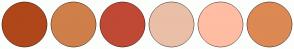 Color Scheme with #AF471A #CF7F4A #C04935 #EABFA7 #FFBDA3 #DC8953