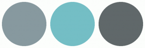 Color Scheme with #87999F #74BEC5 #60686A