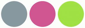 Color Scheme with #87999F #D05691 #A0E144