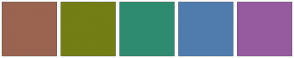 Color Scheme with #9A6451 #737E15 #2F8B70 #4F7CAD #965B9F