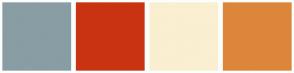 Color Scheme with #899DA4 #C93312 #FAEFD1 #DC863B