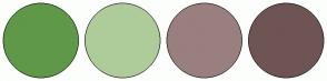 Color Scheme with #5F9849 #AECC99 #9A7F7F #6F5454