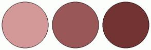Color Scheme with #D39999 #9A5757 #723333