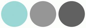 Color Scheme with #9BD7D5 #969696 #616161