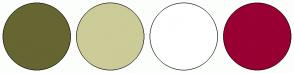 Color Scheme with #666633 #CCCC99 #FFFFFF #990033