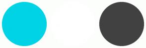 Color Scheme with #00D3E5 #FFFFFF #414141