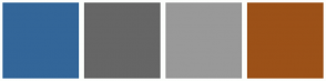 Color Scheme with #336699 #666666 #999999 #9C5118
