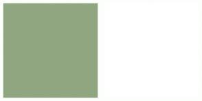 Color Scheme with #90A681 #FFFFFF