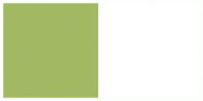 Color Scheme with #A2B964 #FFFFFF