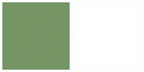 Color Scheme with #759564 #FFFFFF